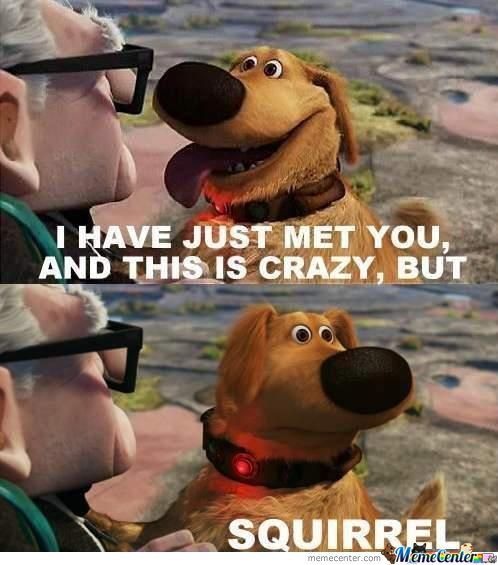 I Have Just Met You..