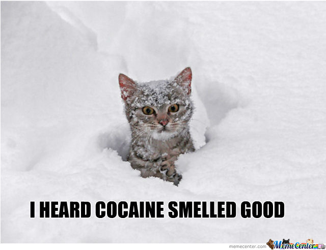 I Heard Cocaine Smelled Good.