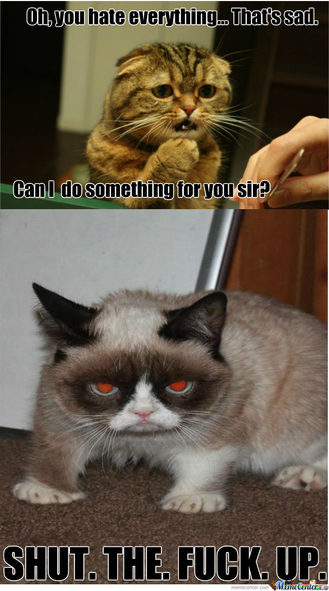 i love grumpy cat so thats why_o_1028826 i love grumpy cat so that's why by werwet meme center