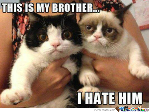 i love my brother_o_1662821 i love my brother by be vamp 00 meme center