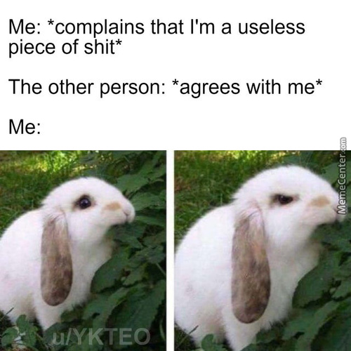 I Meant For You To Comfort Me, Not Insult Me