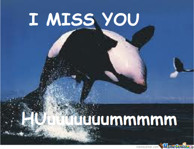 I Miss You Whale By Shak112 Meme Center
