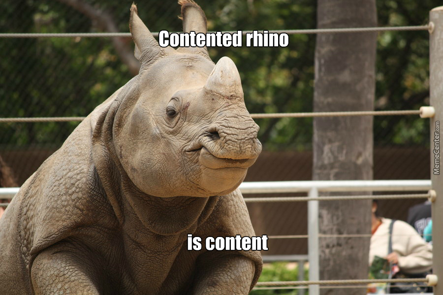 I Never Thought I'd See A Smiling Rhino...