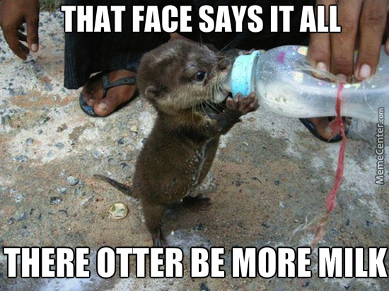 I Otter Be Shot For Such A Pun By Adorkableme Meme Center