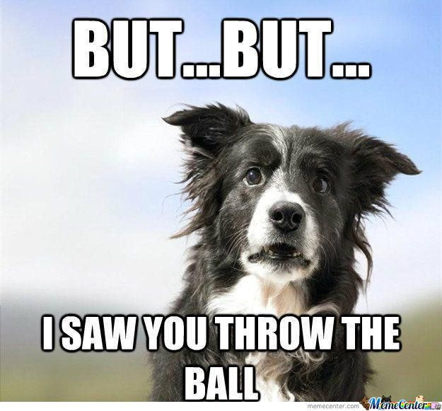 I Saw You Throw The Ball...