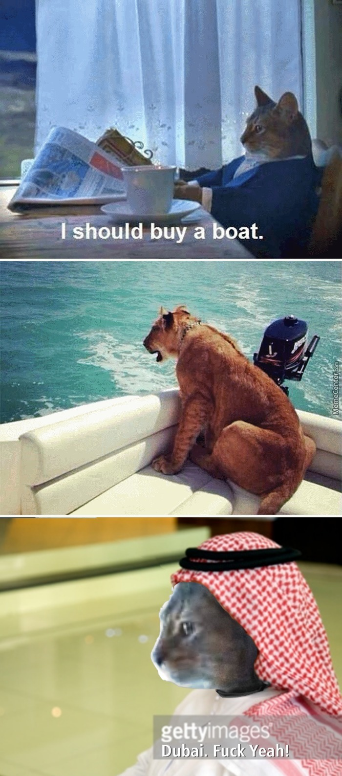 I Should Buy A Boat