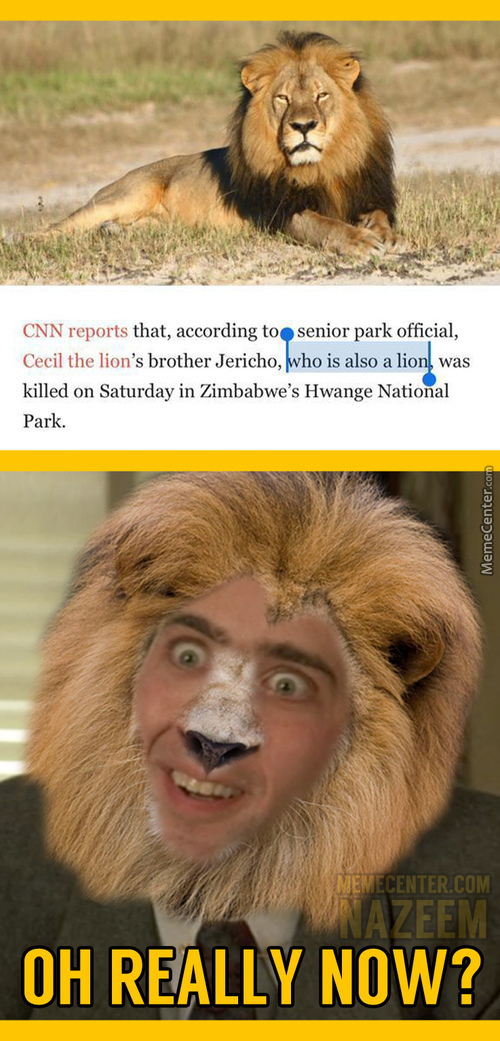I Thought His Brother Was A Rat Or Something, Thanks For The Clarification, Cnn!