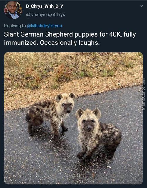 I Want One. Or A Few. Then I Will Change My Name To Scar.