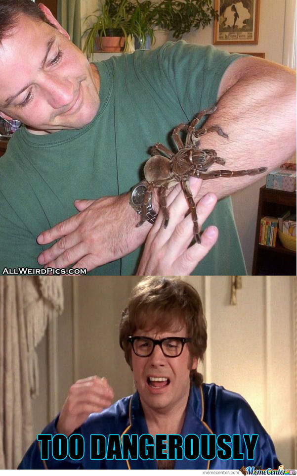 I Will Cover This Tarantula With Liquid Hot Magma.