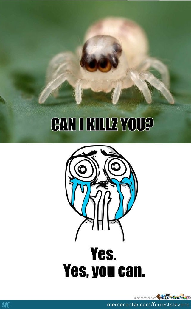 I Would Let This Spider Kill Me