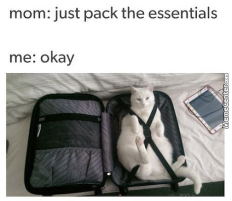 I Would Pack My Gilfriend... If A Had One.