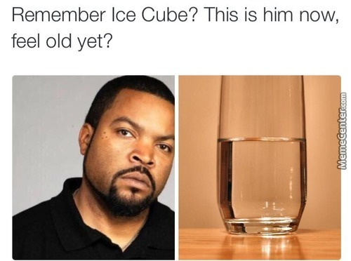 ice cube_o_4093071 ice cube memes best collection of funny ice cube pictures,Ice Cube Meme
