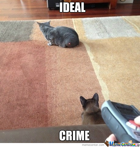 Ideal Crime
