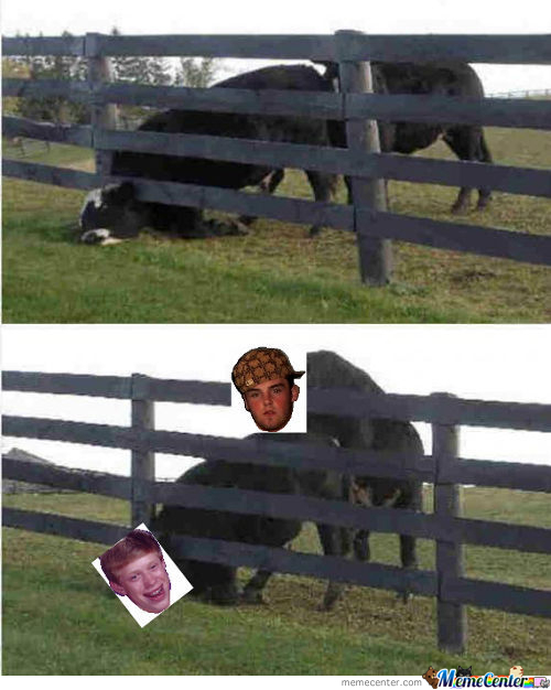 If Memes Were Cows