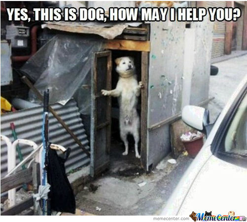 if this is the doghouse let me in_o_1199961 if this is the doghouse, let me in! by peterdude4 meme center,Doghouse Meme