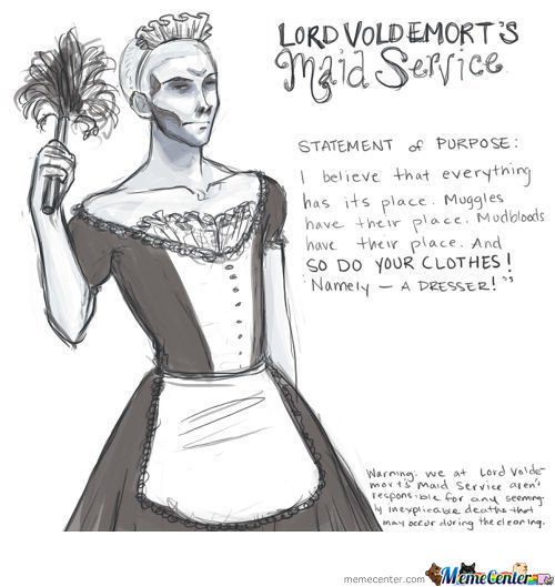 If Voldemort Had Defeated Harry Potter, He May Had Had New Goals, Such As Being A Maid...