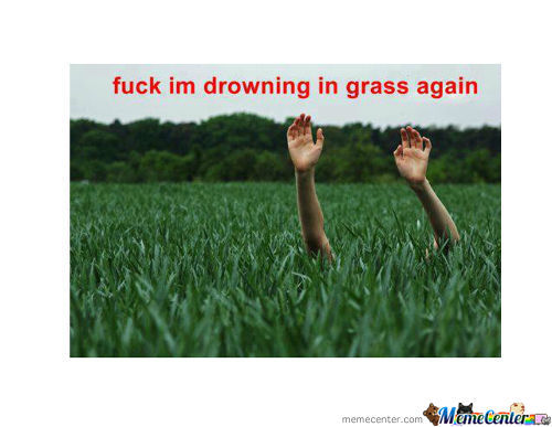 Im Drowning In Grass Again