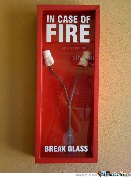 In Case Of Fire Dont Panic And Have Marshmallows