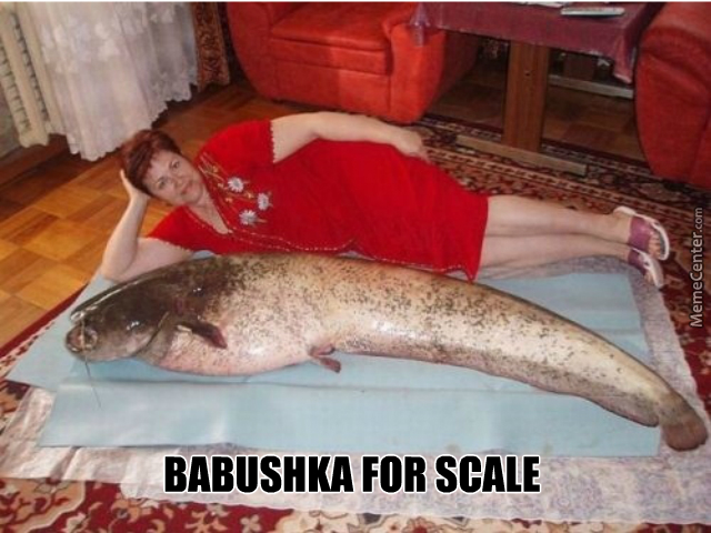 in russia babushka is the scale_o_5925987 in russia, babushka is the scale by finnbogasson meme center