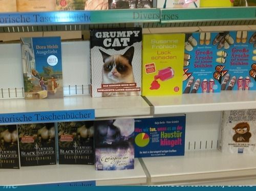 In Shop When Suddnely: Grumpy Cat - The Only Book What Guarantees Bad Mood