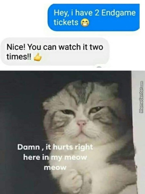 In The Meow Meow