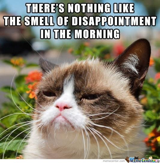 Image of: Realgrumpycat In The Morning With The Official Grumpy Cat Meme Center In The Morning With The Official Grumpy Cat By 666z Meme Center
