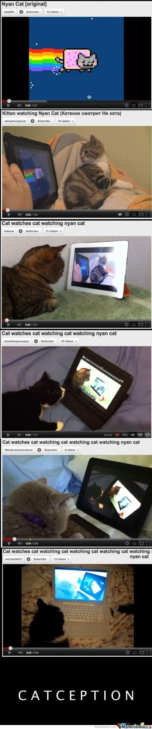 Inception? Catception
