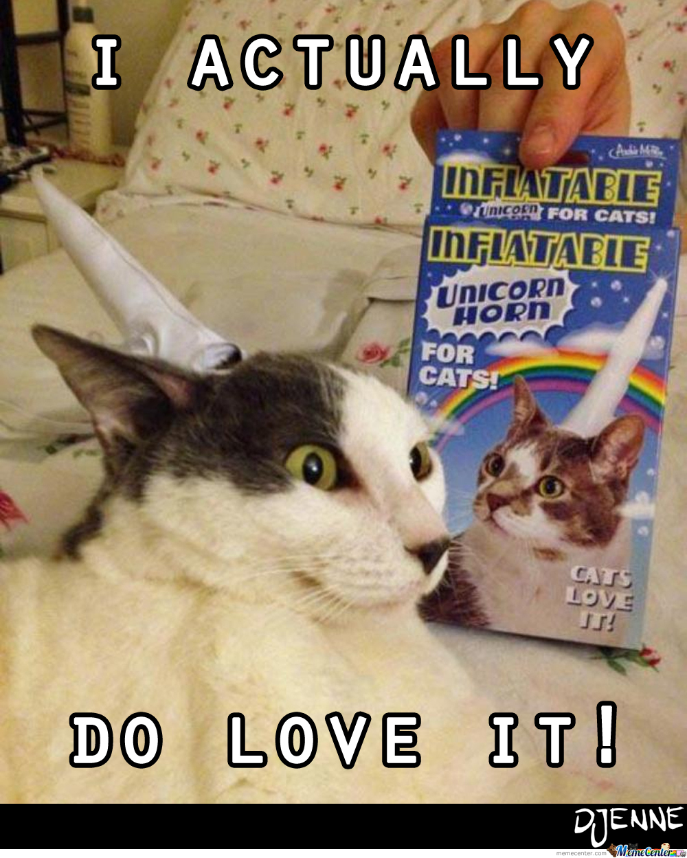 Inflatable Cat Unicorn Horn!