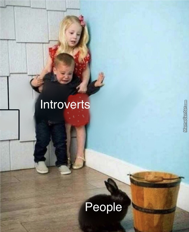 Introverts Vs People