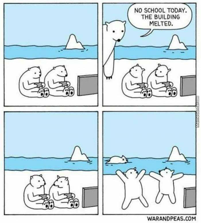 Is That A Dead Bear In The Last Pic?
