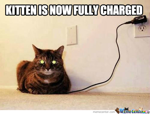 it amp 039 s charged right meow_o_2081013 it's charged right meow by getyak19 meme center,Meow Meme
