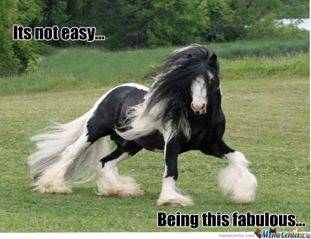 Its Not Easy Being This Fab!