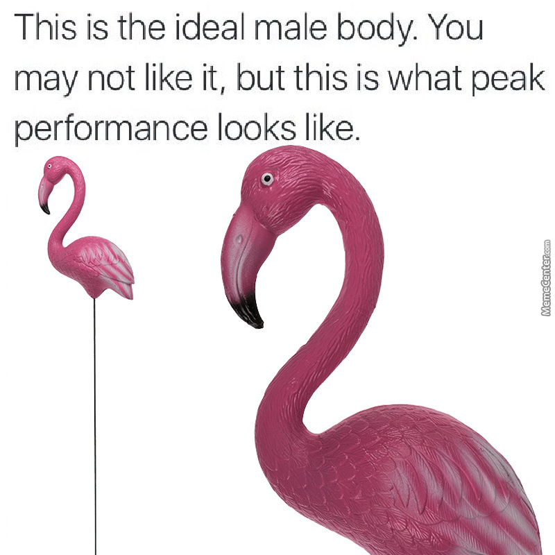 Its Peak Chicken Legs