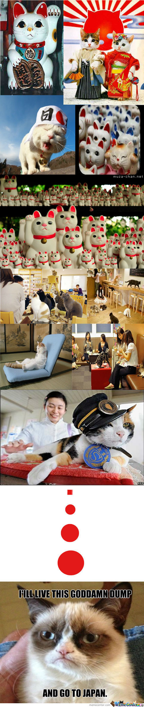 Japan Is Actually Catland