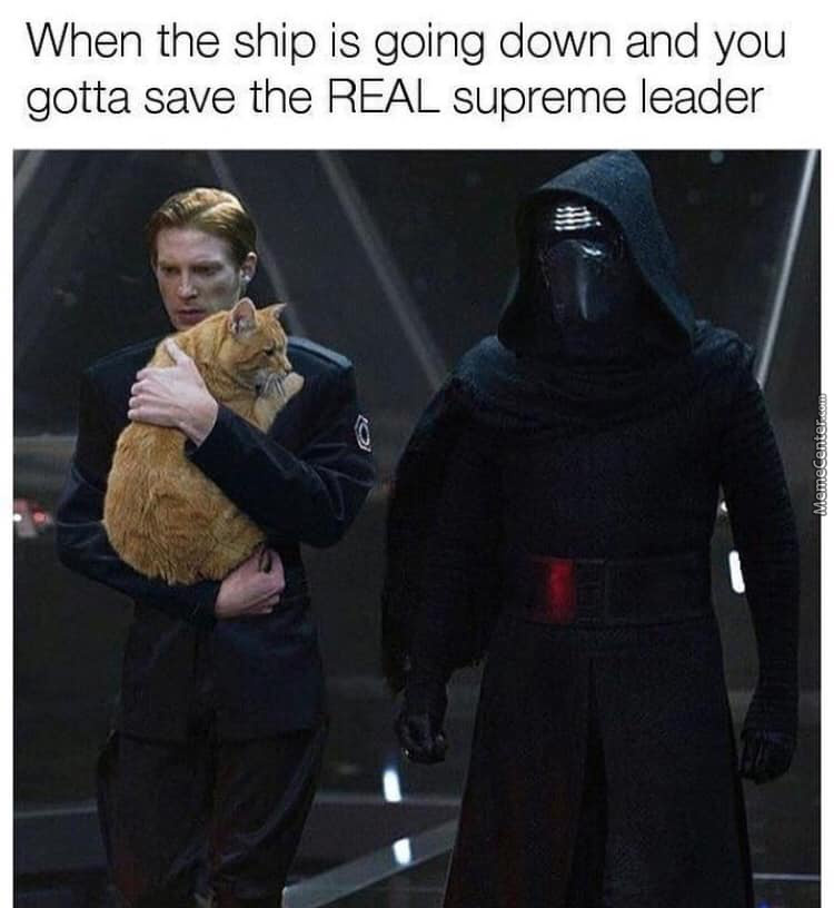 Join The Dark Side Cat
