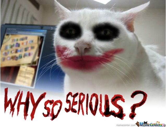 joker s cat wants to know why you are so serious by nirvash meme
