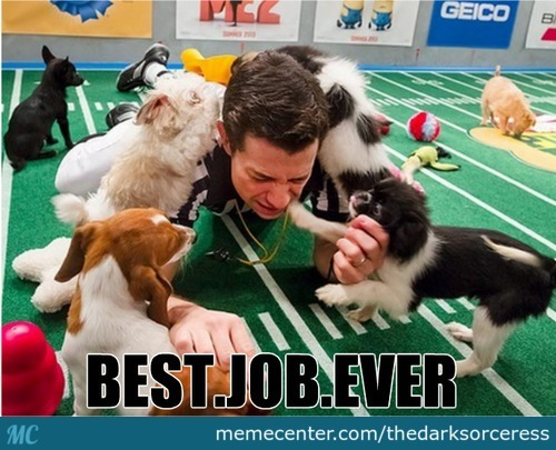 just do you know that is a puppy bowl refree_c_2810705 refree memes best collection of funny refree pictures