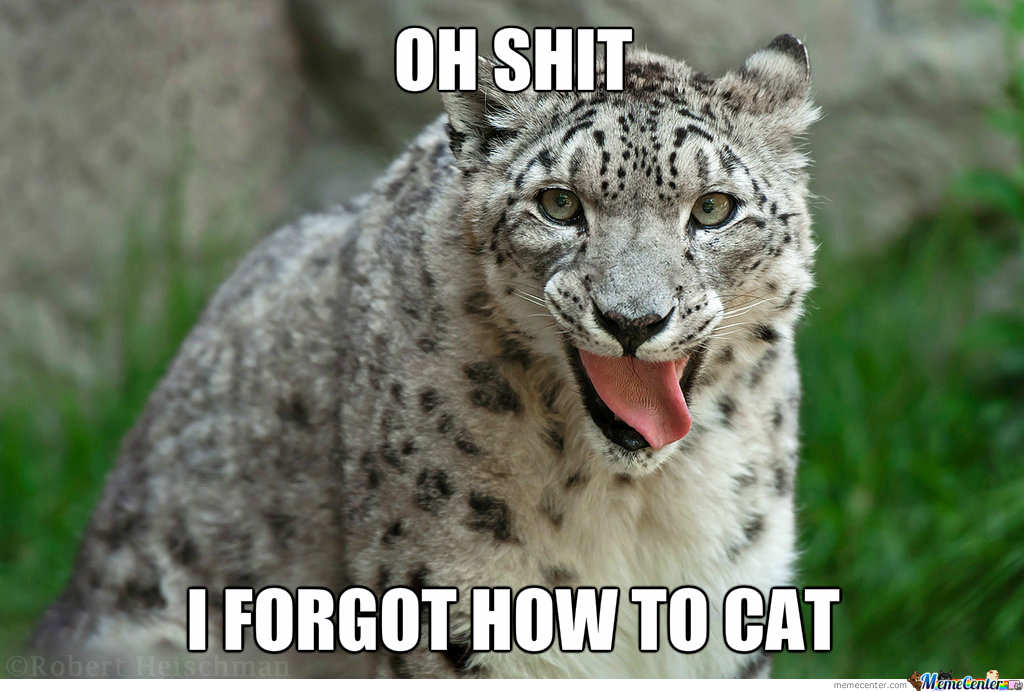 Just Snow Leopard