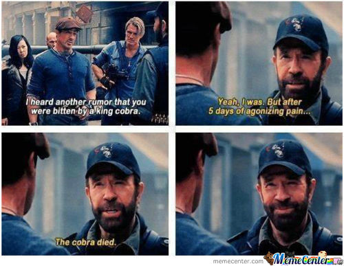 Just Usual Chuck Norris...