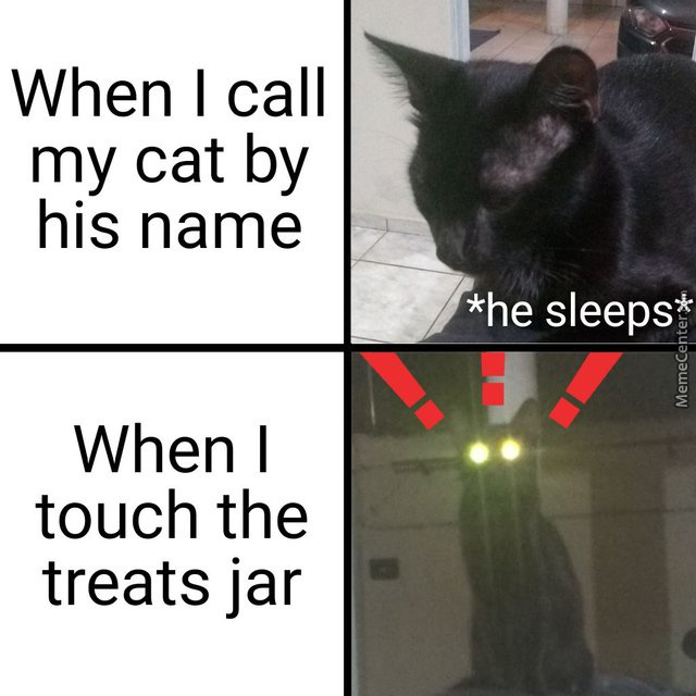 #justcatthings