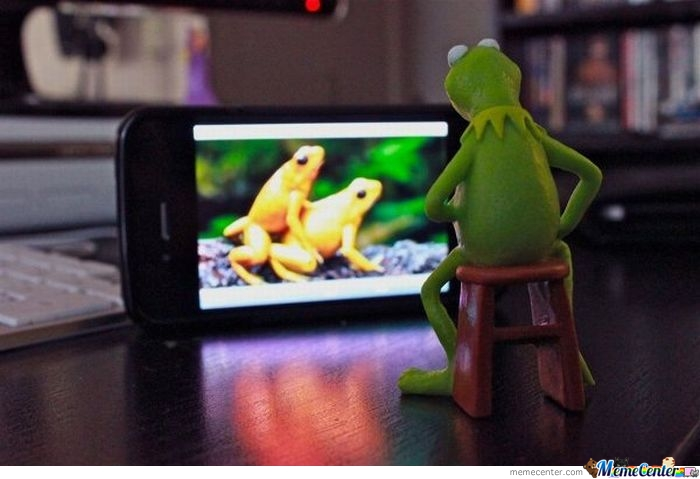 Kermit... Childhood Destroyed