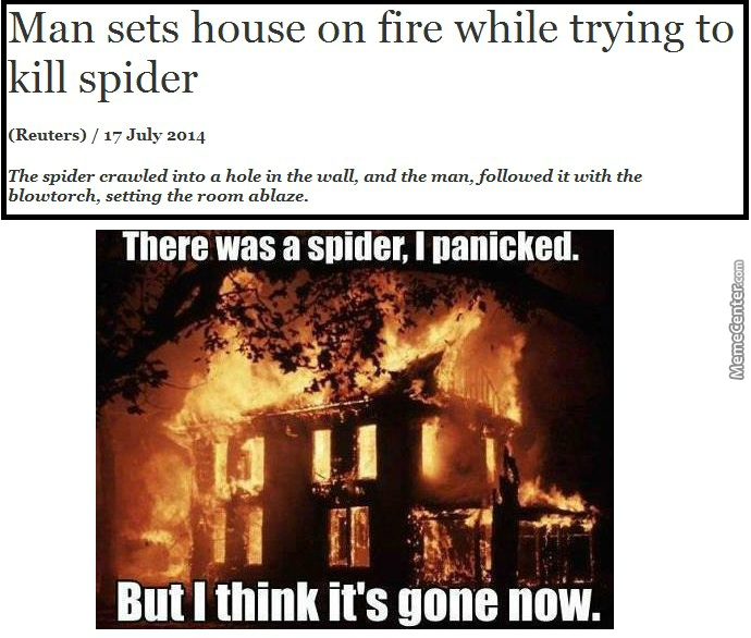 Killing A Spider With Fire And Set Home In Fire Becoming Real Thing