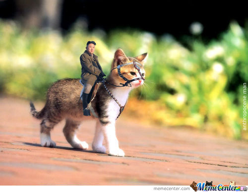Kim Jong Un Kitty Riding