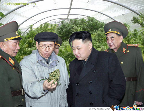 Kim Jong Un Look At Things