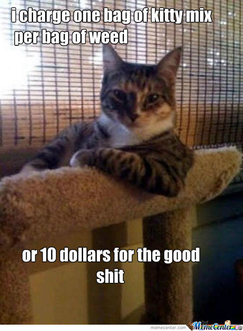 Kitty Drug Dealer
