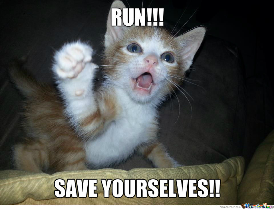 Kitty Wants You To Save Yourself!!