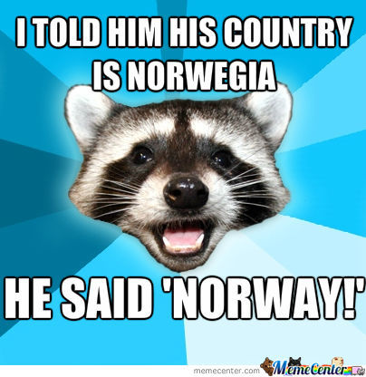 Lame Pun Coon On Norway