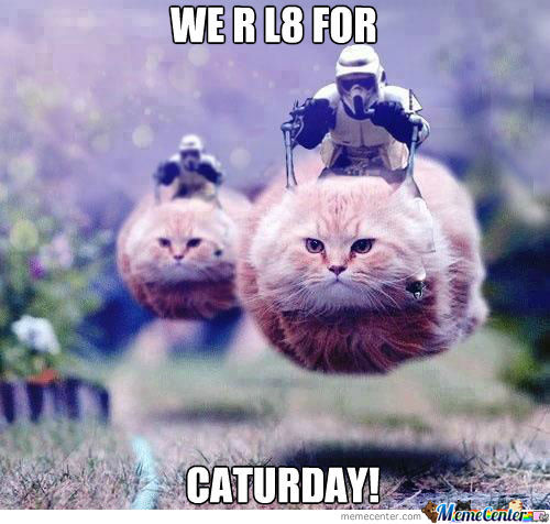 Late For Caturday; By +/- 8 Hours.
