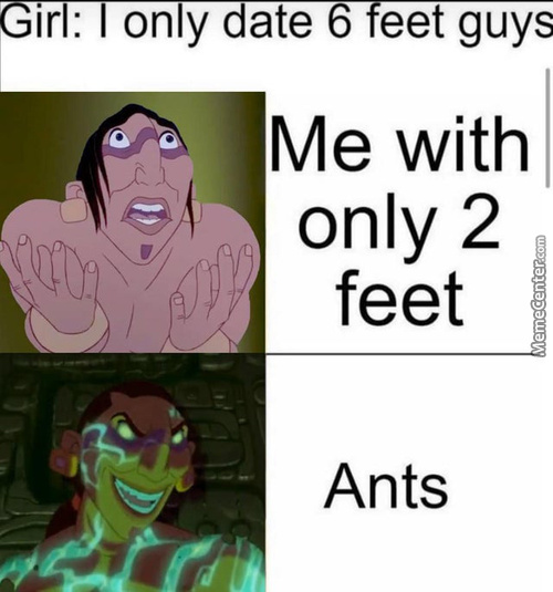 Laughs In Ant