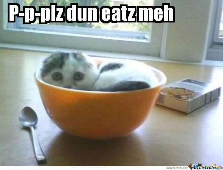 Le Cereal Cat